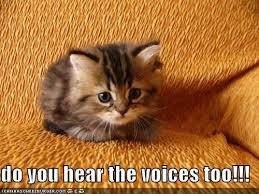 Do you hear the voices too